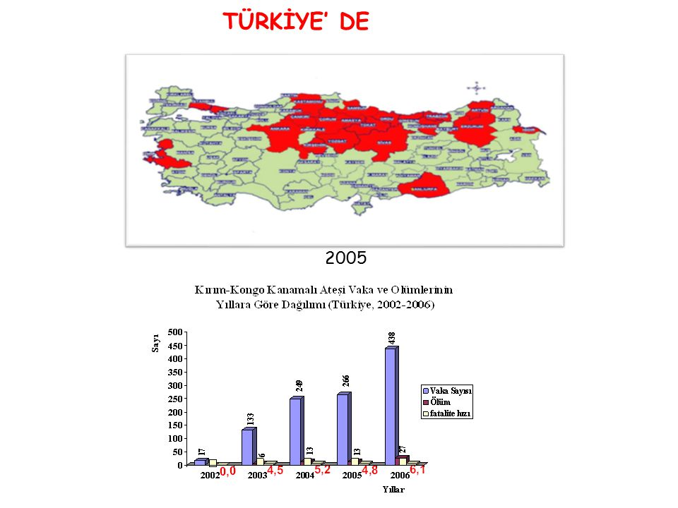 TÜRKİYE' DE 2005 2002-2003 2004