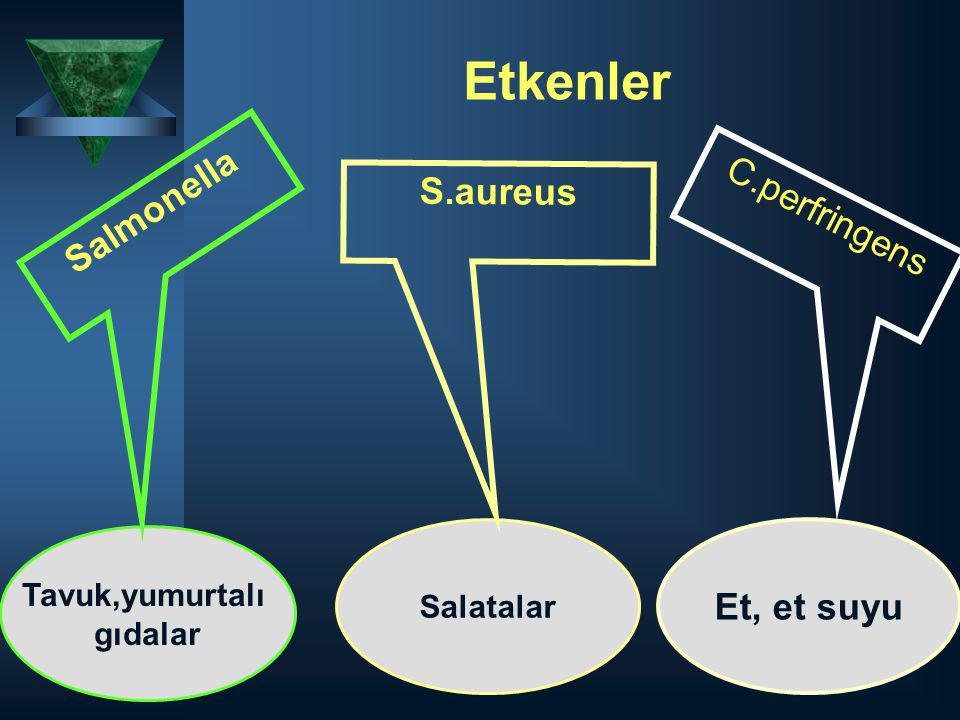 Etkenler Salmonella S.aureus C.perfringens Et, et suyu Tavuk,yumurtalı