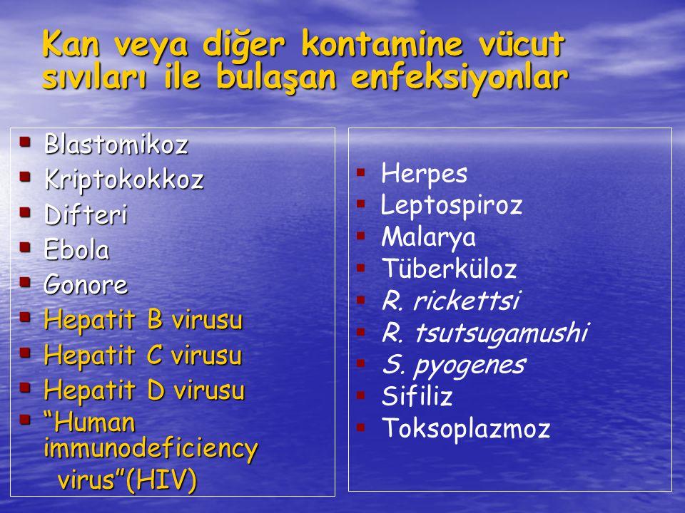 Kan veya diğer kontamine vücut sıvıları ile bulaşan enfeksiyonlar
