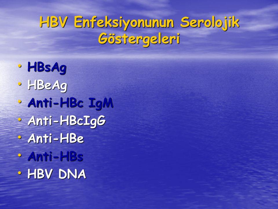 HBV Enfeksiyonunun Serolojik Göstergeleri
