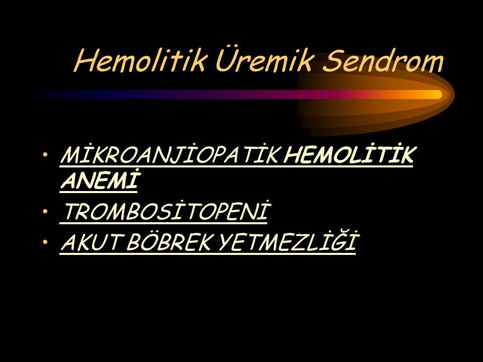 Hemolitik Üremik Sendrom