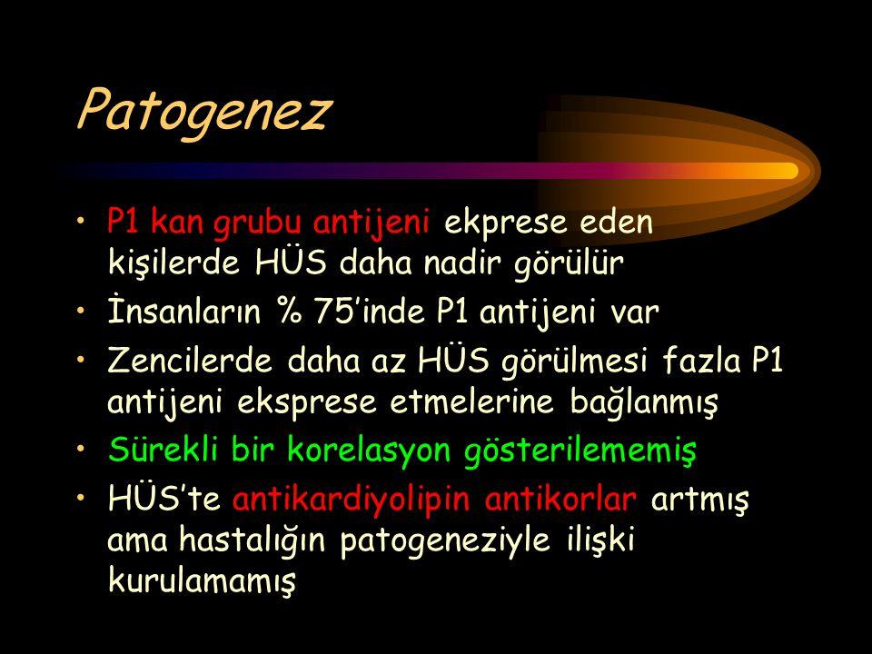 Patogenez P1 kan grubu antijeni ekprese eden kişilerde HÜS daha nadir görülür. İnsanların % 75'inde P1 antijeni var.