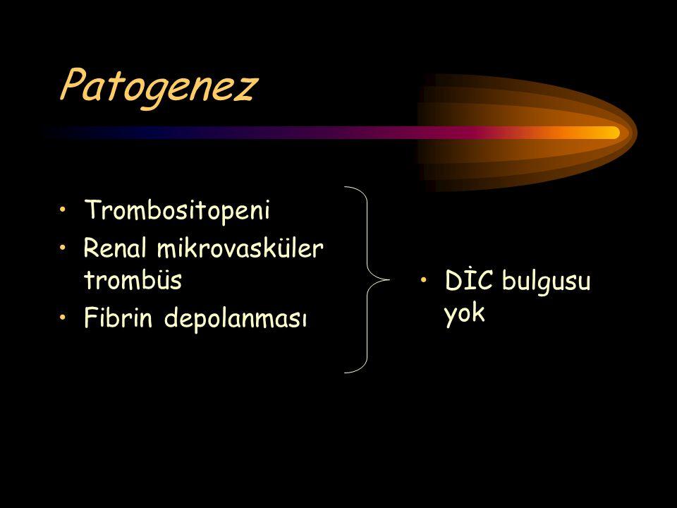Patogenez Trombositopeni Renal mikrovasküler trombüs DİC bulgusu yok