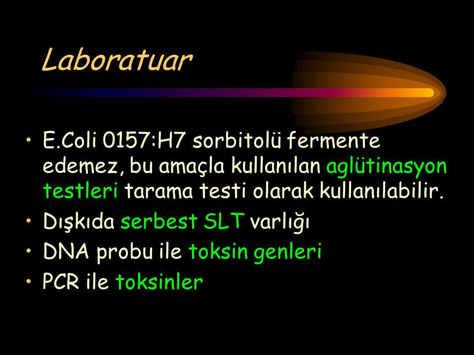Laboratuar E.Coli 0157:H7 sorbitolü fermente edemez, bu amaçla kullanılan aglütinasyon testleri tarama testi olarak kullanılabilir.