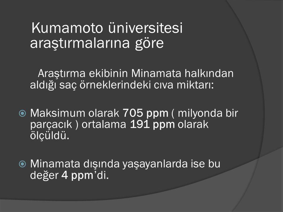 Kumamoto üniversitesi araştırmalarına göre