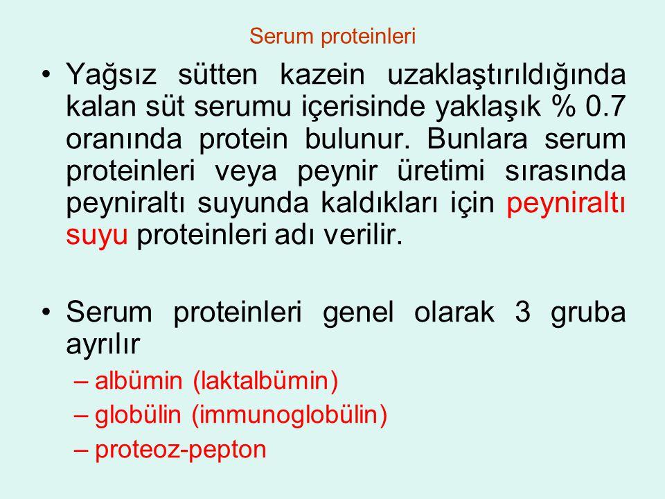 Serum proteinleri genel olarak 3 gruba ayrılır