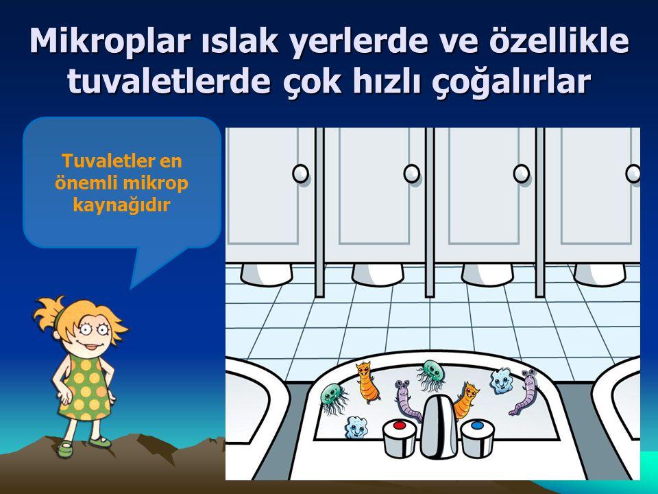 Tuvaletler en önemli mikrop kaynağıdır