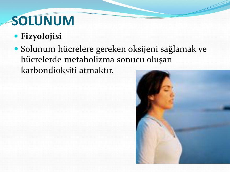 SOLUNUM Fizyolojisi.