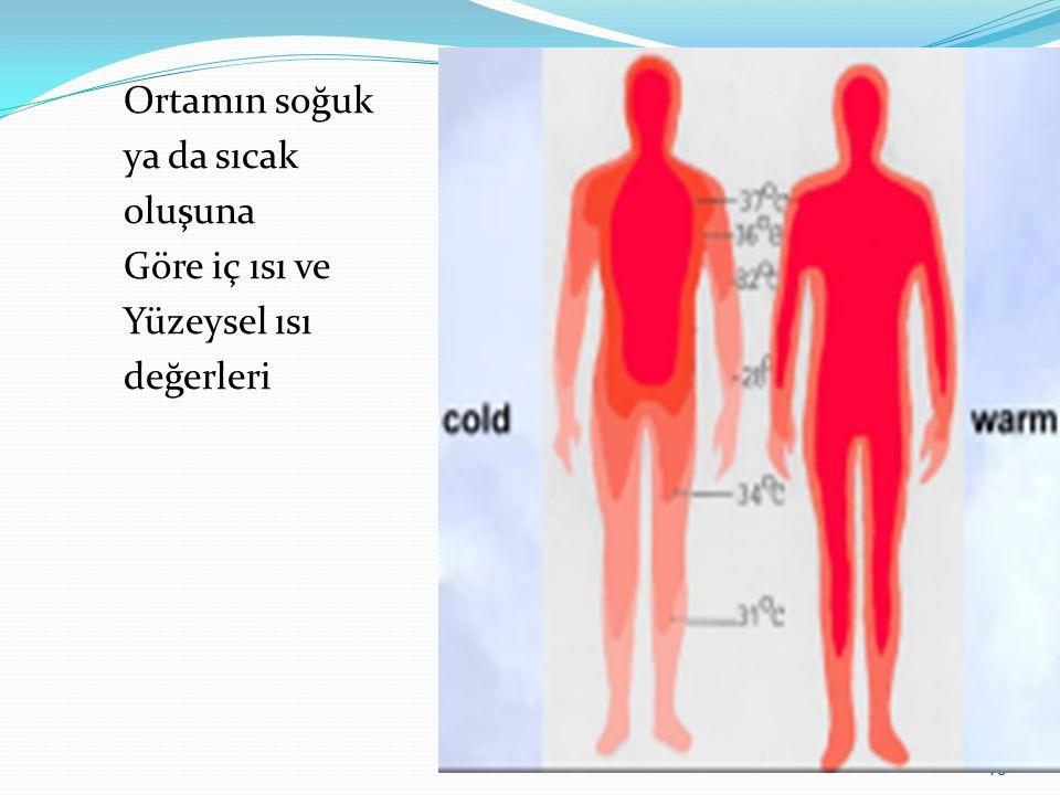 Ortamın soğuk ya da sıcak oluşuna Göre iç ısı ve Yüzeysel ısı değerleri