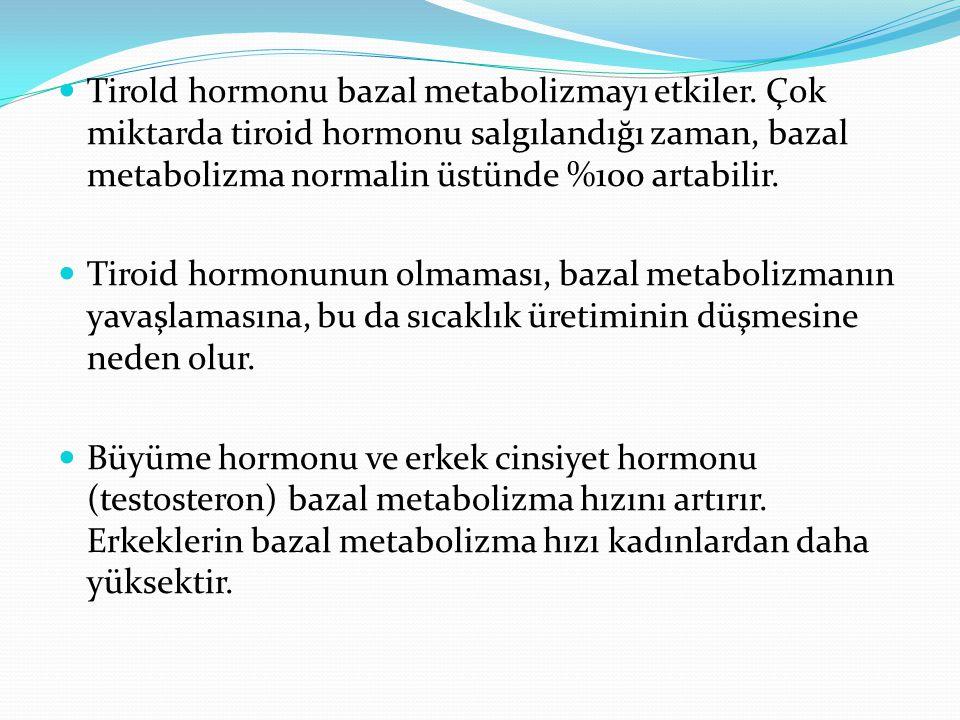 Tirold hormonu bazal metabolizmayı etkiler