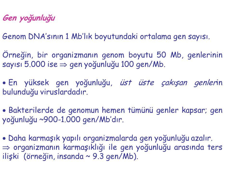 Gen yoğunluğu Genom DNA'sının 1 Mb'lık boyutundaki ortalama gen sayısı.