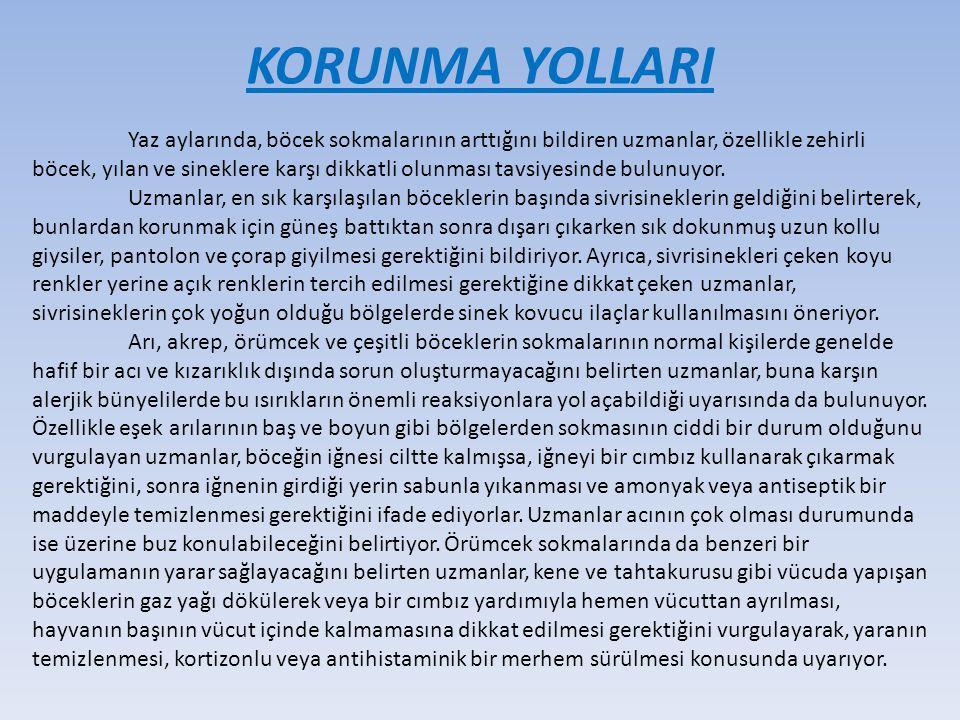 KORUNMA YOLLARI