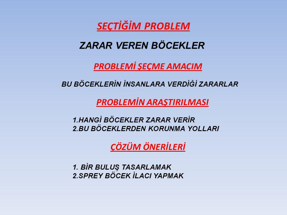 PROBLEMİN ARAŞTIRILMASI
