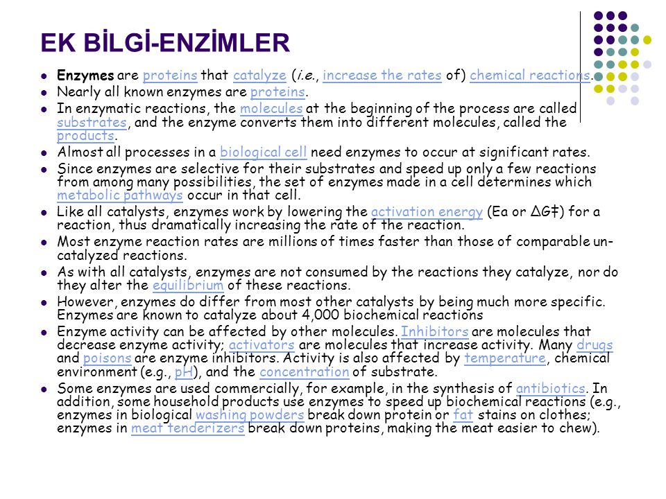 EK BİLGİ-ENZİMLER Enzymes are proteins that catalyze (i.e., increase the rates of) chemical reactions.