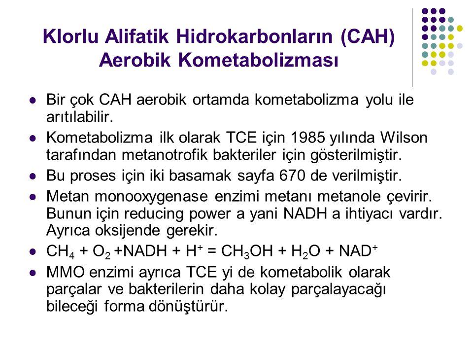 Klorlu Alifatik Hidrokarbonların (CAH) Aerobik Kometabolizması