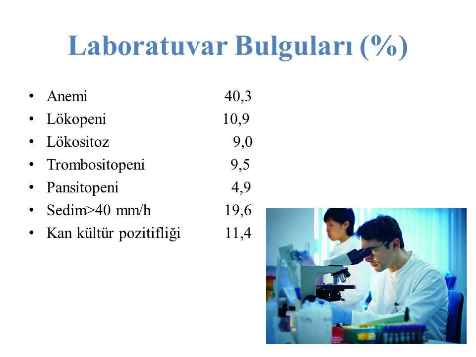 Laboratuvar Bulguları (%)