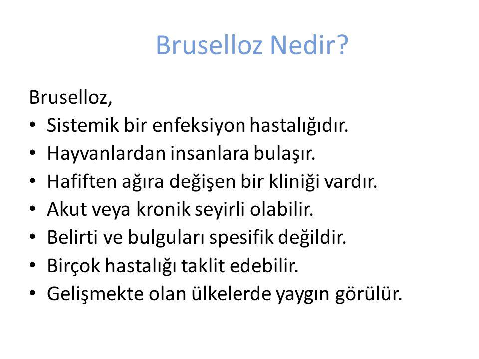 Bruselloz Nedir Bruselloz, Sistemik bir enfeksiyon hastalığıdır.