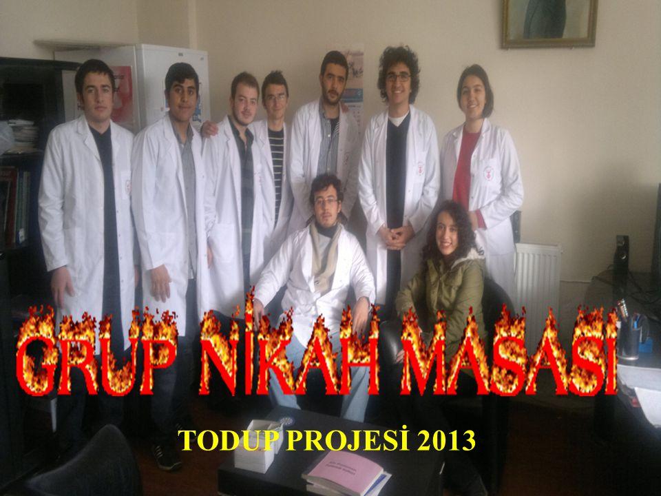 TODUP PROJESİ 2013