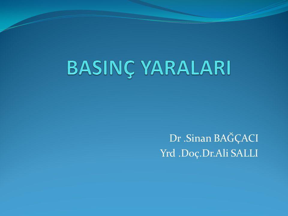 Dr .Sinan BAĞÇACI Yrd .Doç.Dr.Ali SALLI