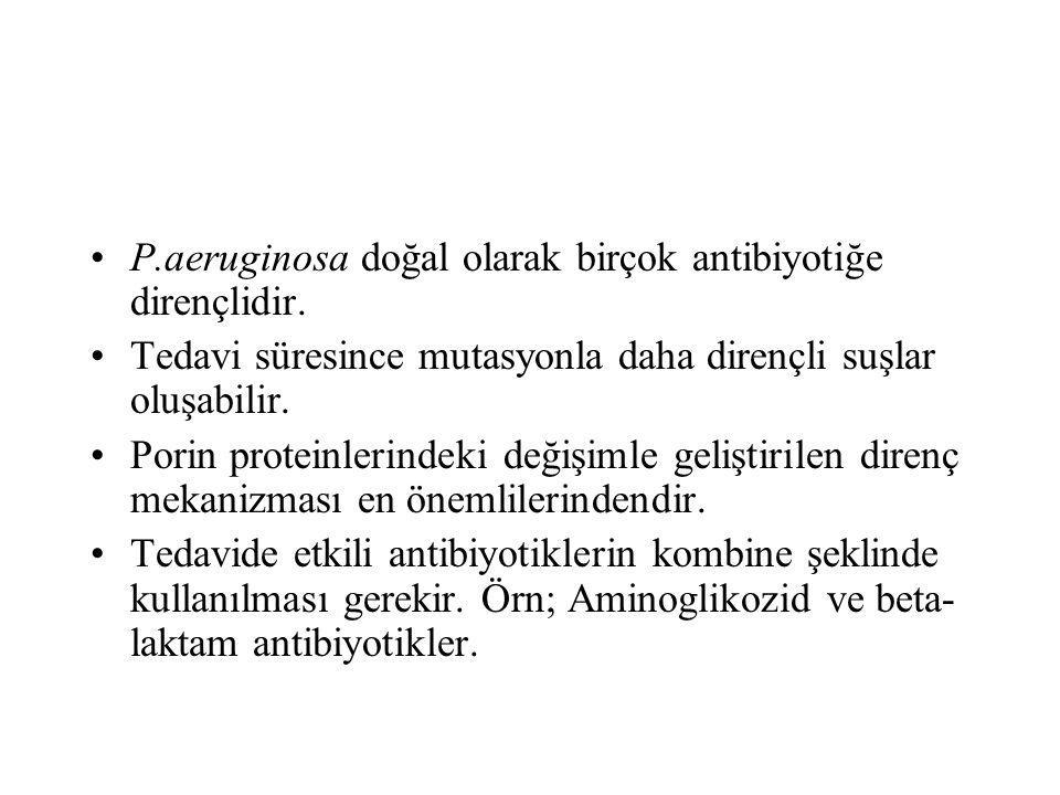 P.aeruginosa doğal olarak birçok antibiyotiğe dirençlidir.