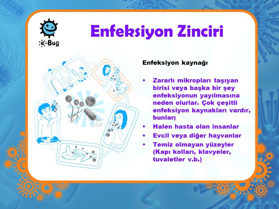 Enfeksiyon Zinciri Enfeksiyon kaynağı