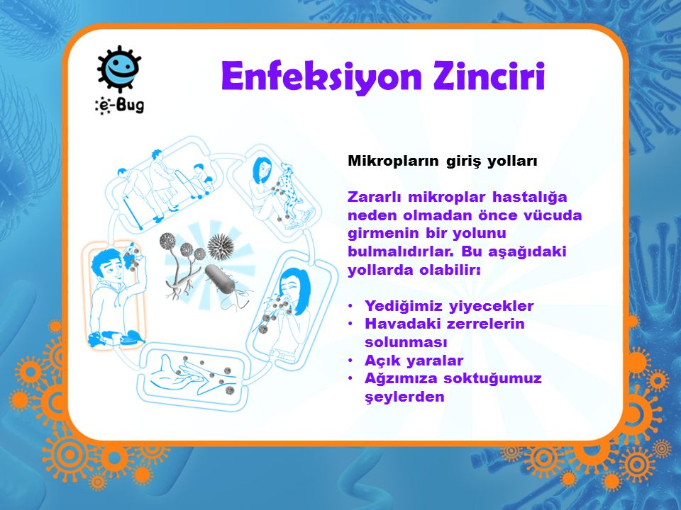 Enfeksiyon Zinciri Mikropların giriş yolları
