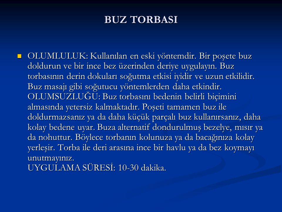 BUZ TORBASI