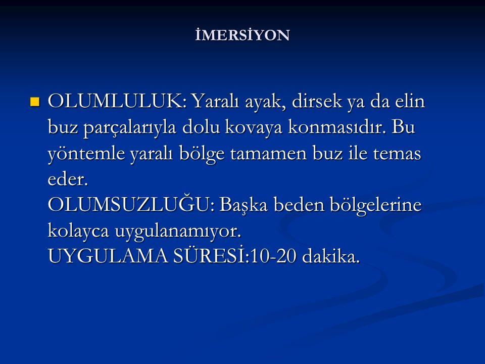 İMERSİYON