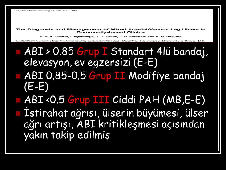 ABI > 0.85 Grup I Standart 4lü bandaj, elevasyon, ev egzersizi (E-E)