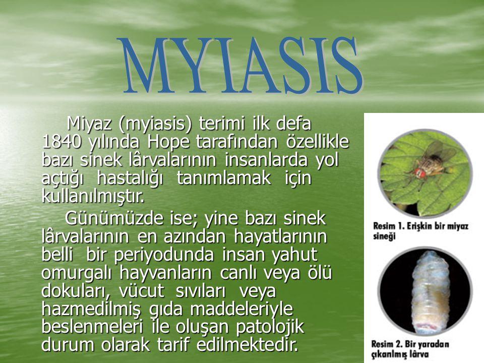 MYIASIS