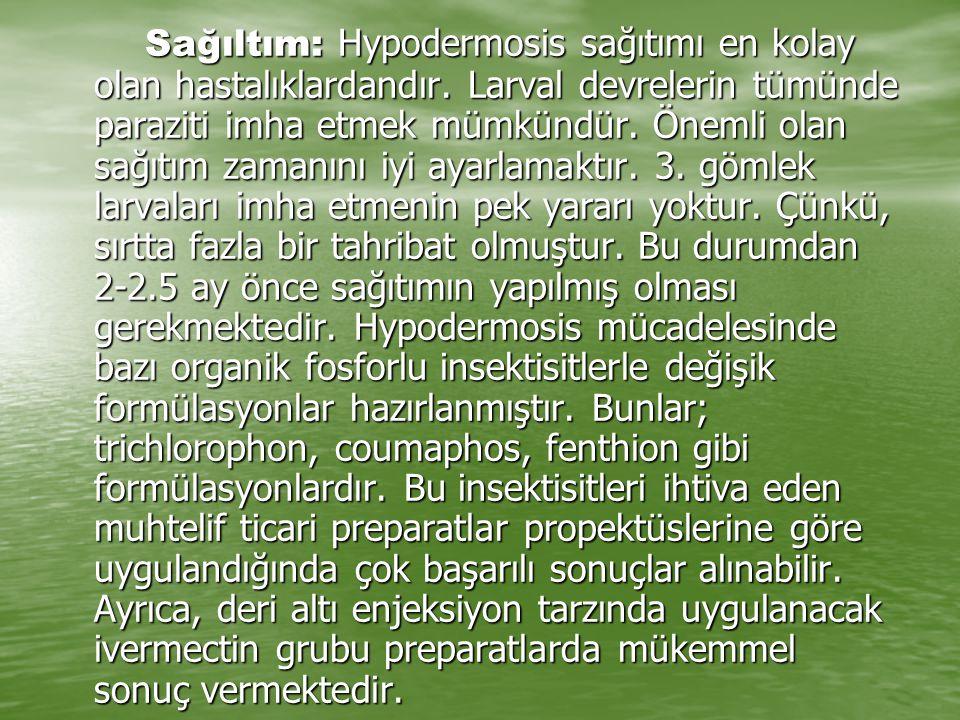 Sağıltım: Hypodermosis sağıtımı en kolay olan hastalıklardandır