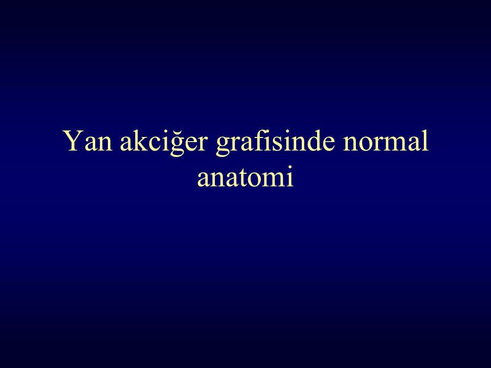 Yan akciğer grafisinde normal anatomi