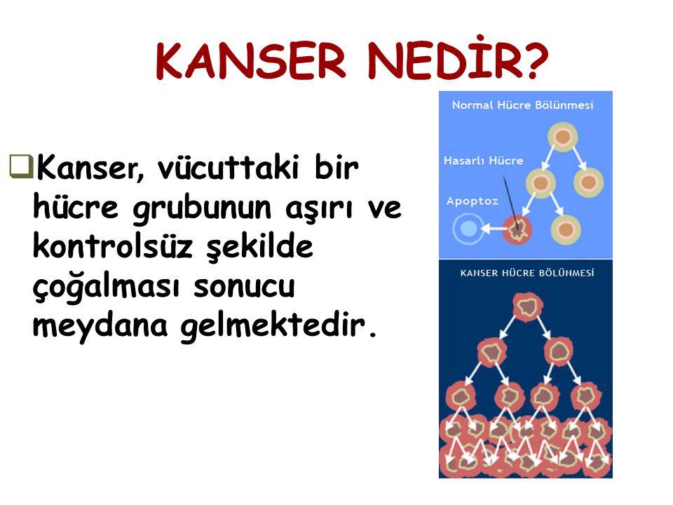 KANSER NEDİR Kanser, vücuttaki bir hücre grubunun aşırı ve kontrolsüz şekilde çoğalması sonucu meydana gelmektedir.