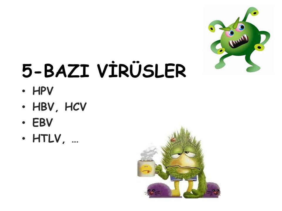 5-BAZI VİRÜSLER HPV HBV, HCV EBV HTLV, … 20