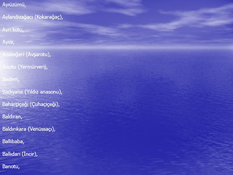 Ayıüzümü, Aylandızağacı (Kokarağaç), Ayrı kotu, Ayva, Azakeğeri (Avşarotu), Azıotu (Yermürverij,
