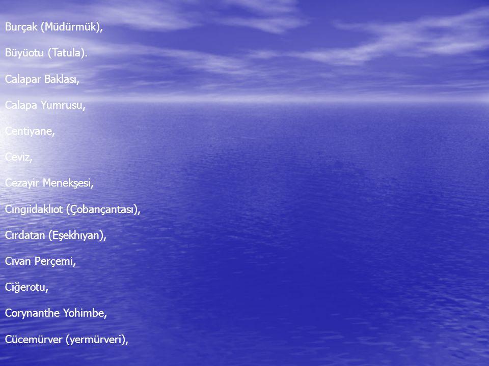 Burçak (Müdürmük), Büyüotu (Tatula). Calapar Baklası, Calapa Yumrusu, Centiyane, Ceviz, Cezayir Menekşesi,
