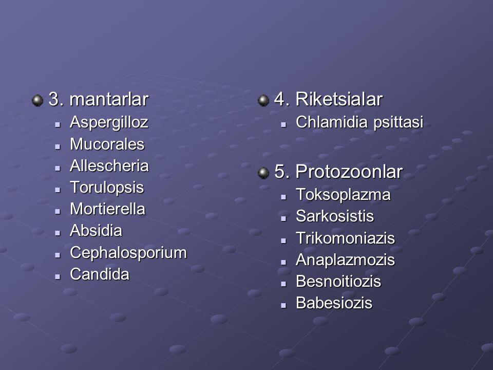 3. mantarlar 4. Riketsialar 5. Protozoonlar Aspergilloz Mucorales