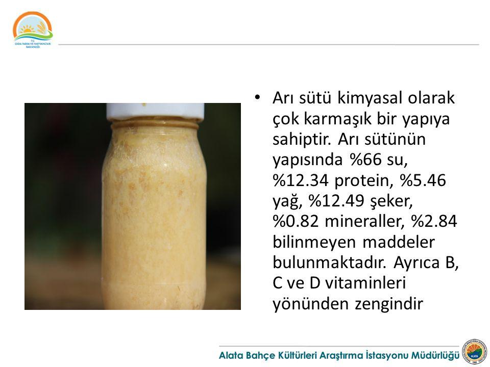 Arı sütü kimyasal olarak çok karmaşık bir yapıya sahiptir
