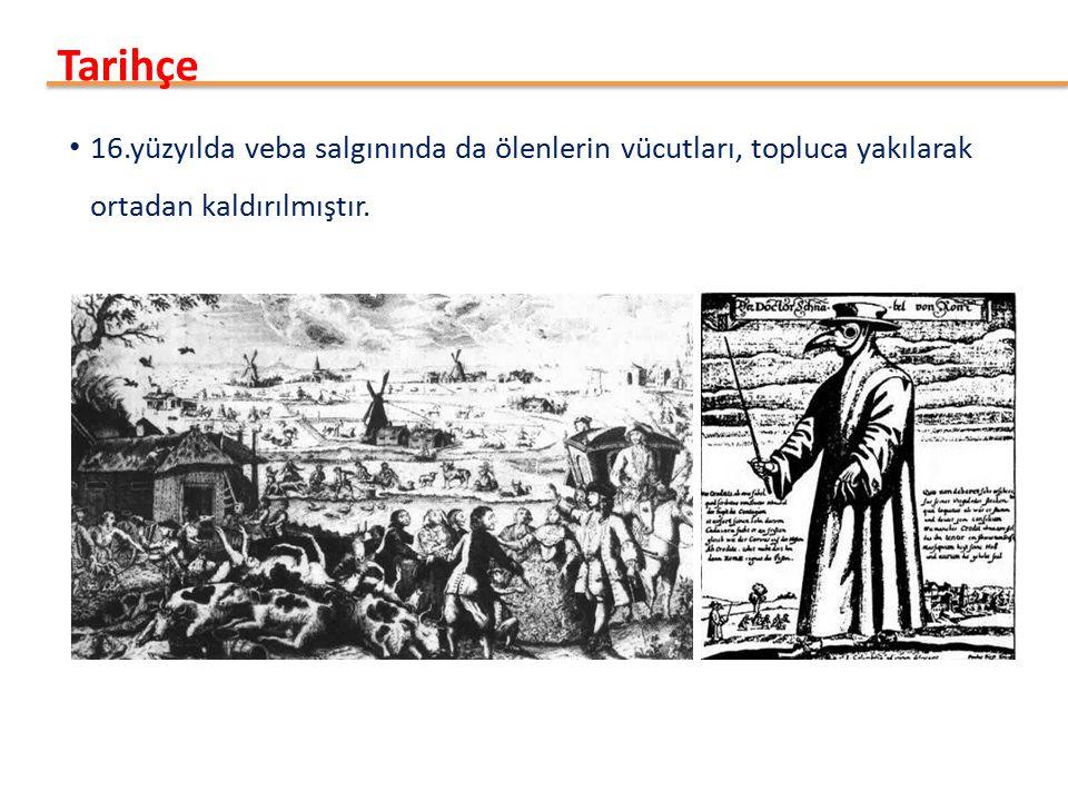 Tarihçe 16.yüzyılda veba salgınında da ölenlerin vücutları, topluca yakılarak ortadan kaldırılmıştır.
