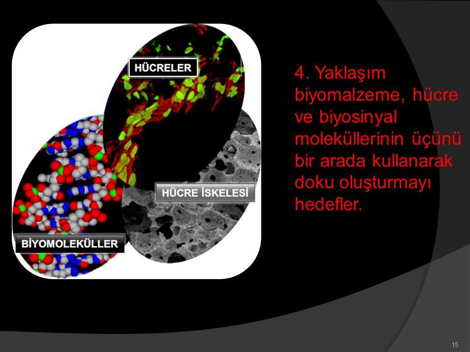 HÜCRELER 4. Yaklaşım biyomalzeme, hücre ve biyosinyal moleküllerinin üçünü bir arada kullanarak doku oluşturmayı hedefler.