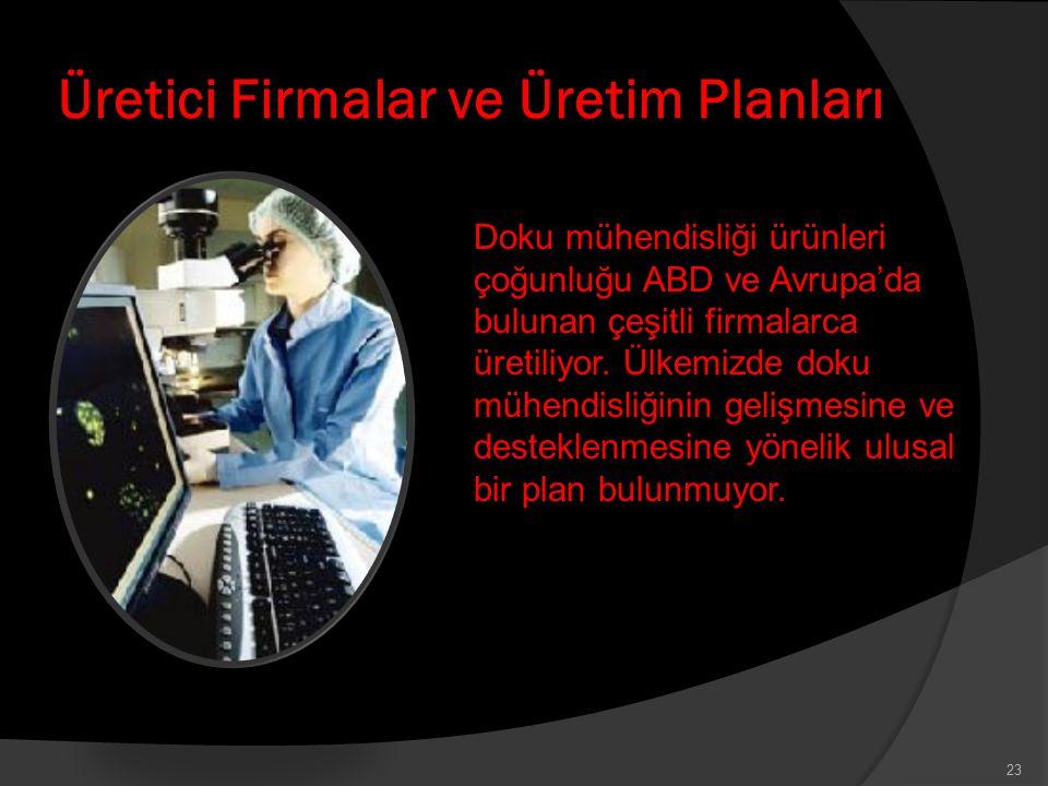 Üretici Firmalar ve Üretim Planları