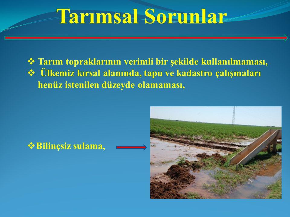 Tarımsal Sorunlar Tarım topraklarının verimli bir şekilde kullanılmaması,