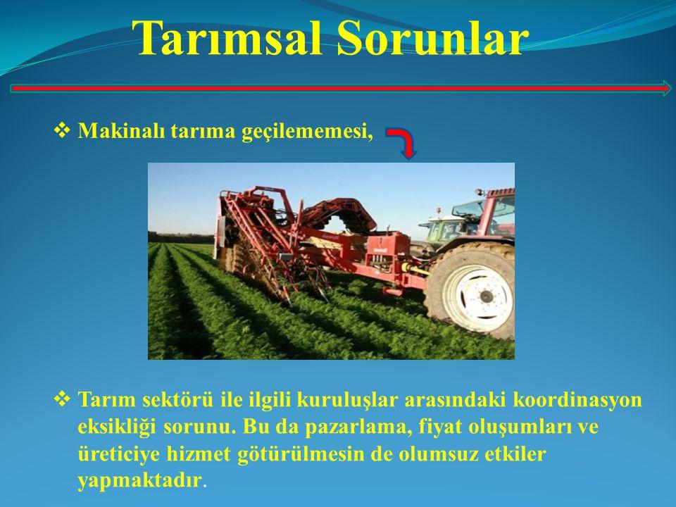 Tarımsal Sorunlar Makinalı tarıma geçilememesi,
