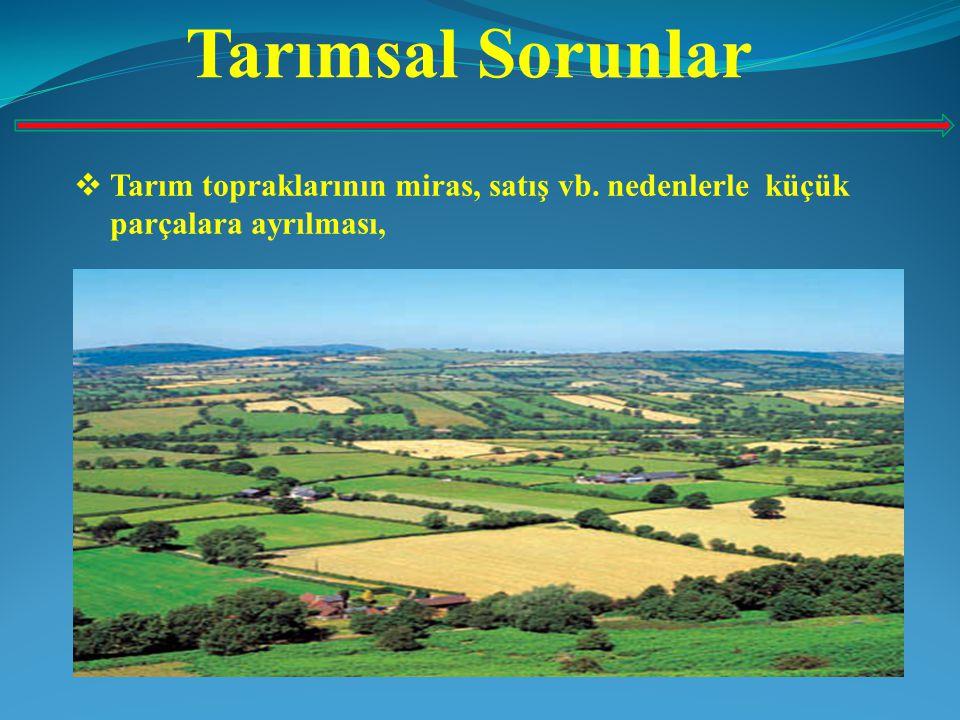 Tarımsal Sorunlar Tarım topraklarının miras, satış vb. nedenlerle küçük parçalara ayrılması,