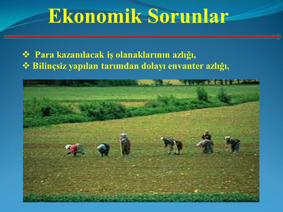 Ekonomik Sorunlar Para kazanılacak iş olanaklarının azlığı,