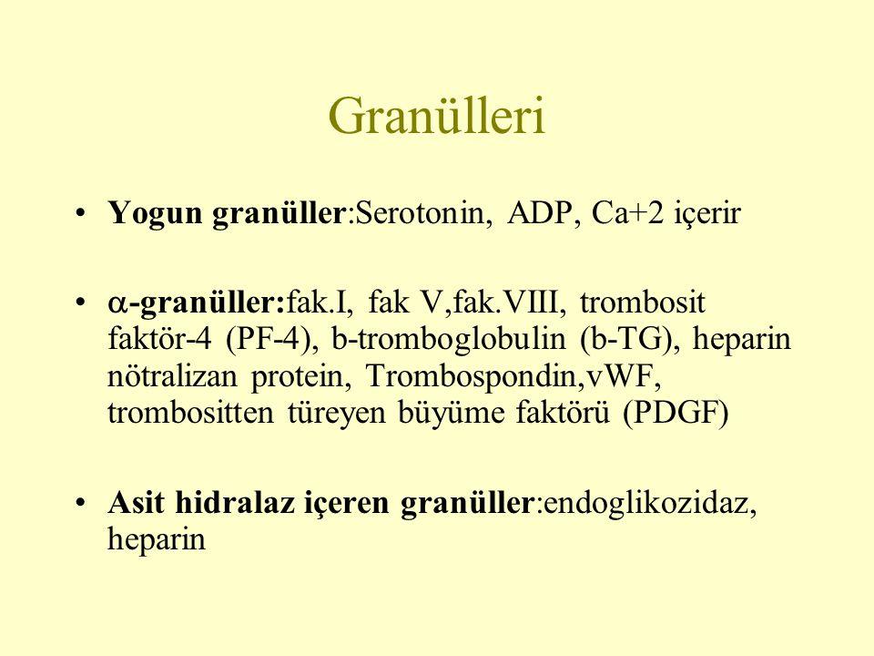 Granülleri Yogun granüller:Serotonin, ADP, Ca+2 içerir