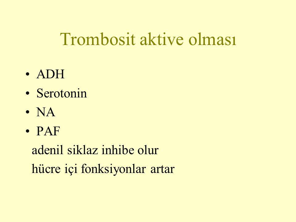 Trombosit aktive olması