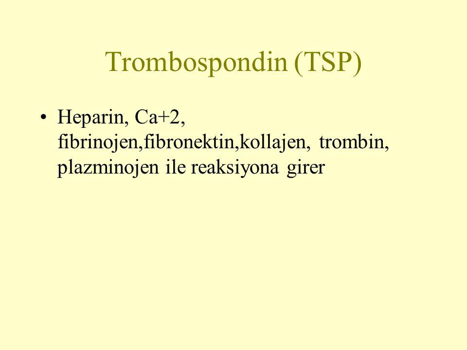 Trombospondin (TSP) Heparin, Ca+2, fibrinojen,fibronektin,kollajen, trombin, plazminojen ile reaksiyona girer.