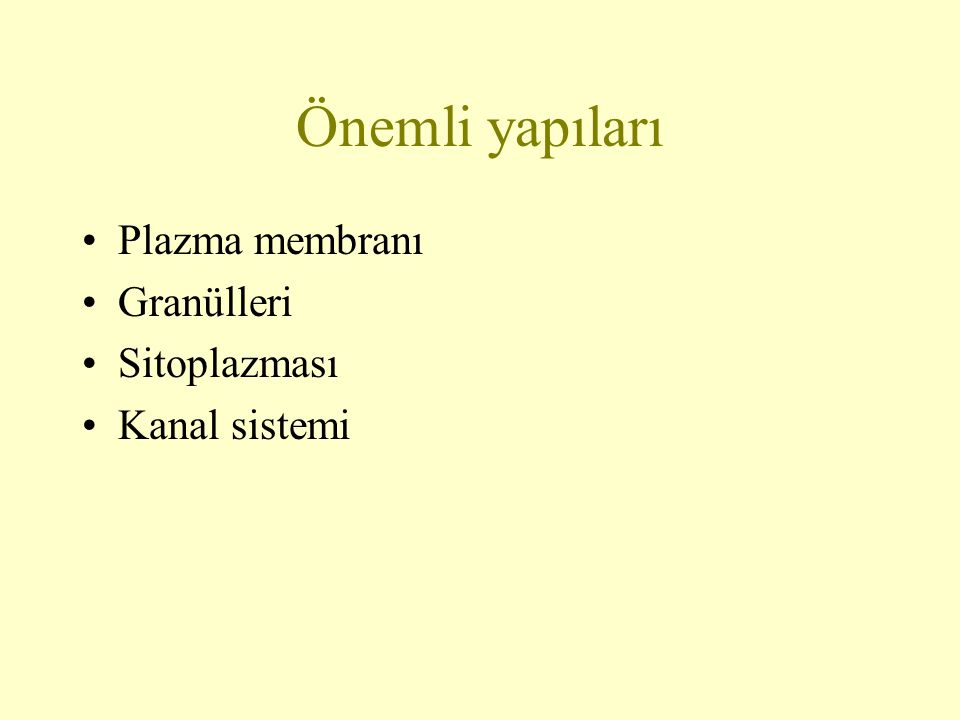 Önemli yapıları Plazma membranı Granülleri Sitoplazması Kanal sistemi