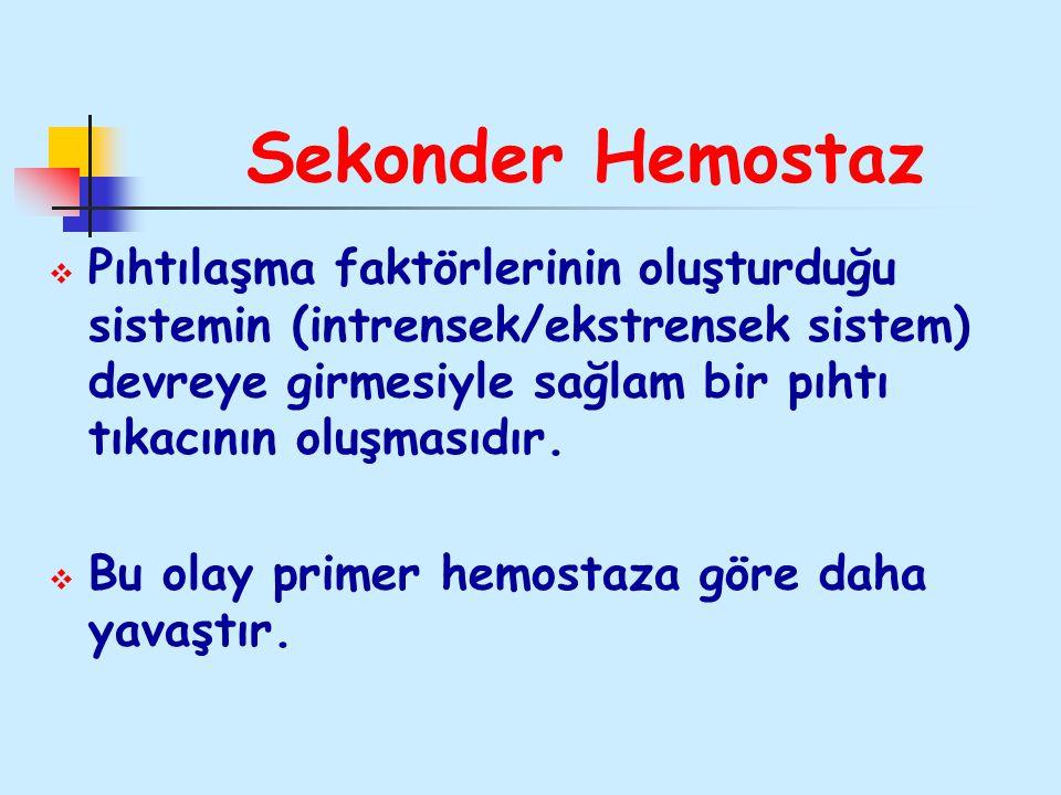 Sekonder Hemostaz